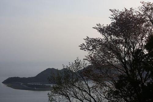 039_R.JPG
